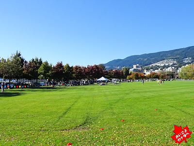 カナダの小学校 クロスカントリーレース 広い公園