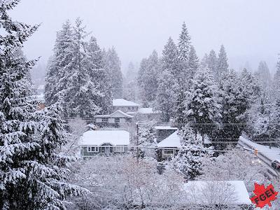 雪で学校休み