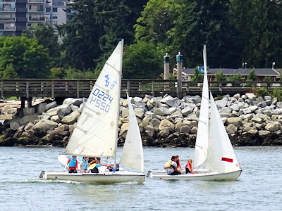 ヨットをうまく操縦する子供たち