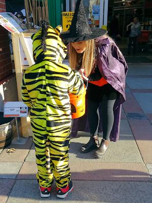 ハロウィーン コスチューム タイガーと魔女