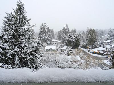 雪のために学校が休み