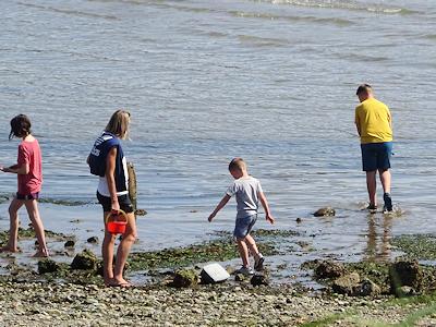 海辺で水遊び