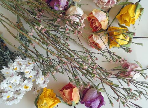 winterdryflowers.jpg