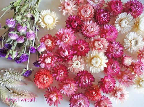 dryflowerset.jpg