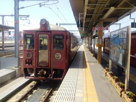 h250405:赤松・青松 001