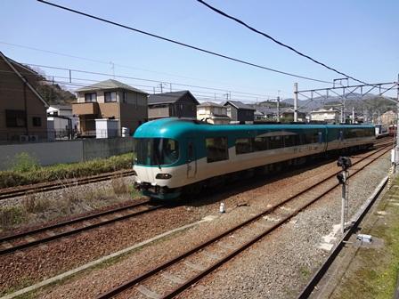 h250405:赤松・青松 002