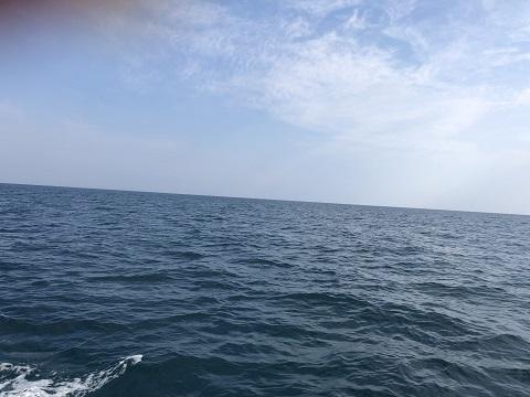 R01.05.06:伊根沖004