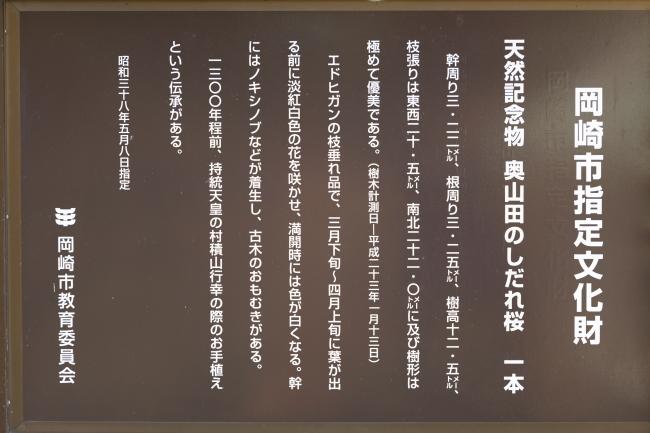 0W2A8098.JPG