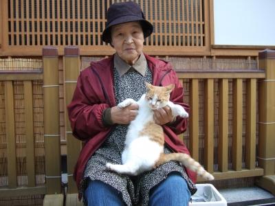 猫とおばちゃん