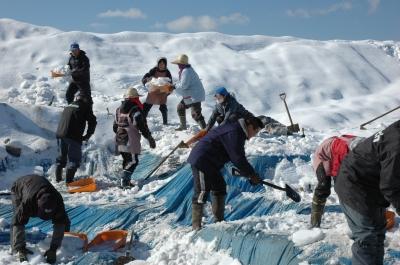雪の中から発掘現場をハックツ!