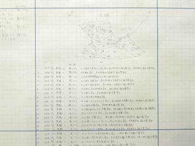 フラスコ状土坑の断面実測図