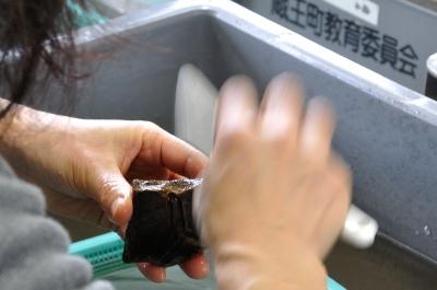 土器の洗浄