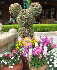 スプリングカーニバル2007 パークの花