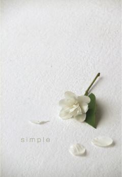 simple01.jpg