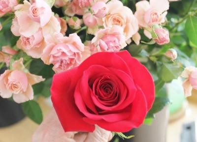 赤バラ 大きさ いわき市 小名浜の花屋 花国湘南台店