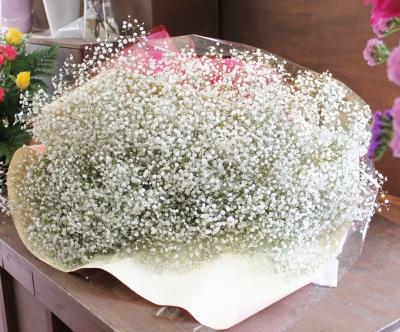 かすみ草 花束 いわき市小名浜の花屋 花国湘南台店