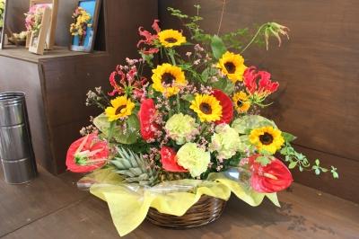 トロピカル お花 いわき市小名浜の花屋 花国湘南台店
