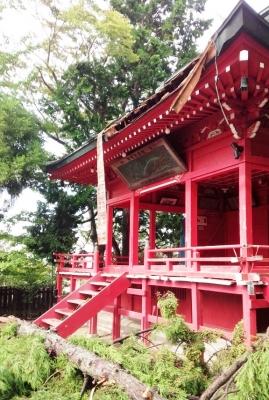 諏訪神社、小名浜、台風、いわき市小名浜の花屋,花国湘南台店