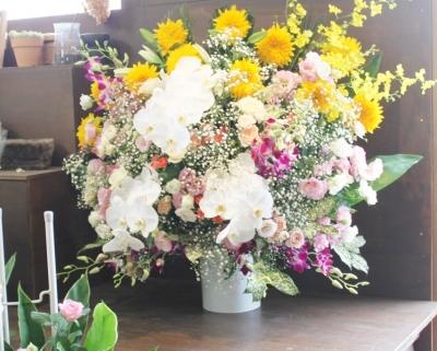 お祝い花、スタンド花、開店祝い、いわき市小名浜の花屋,花国湘南台店
