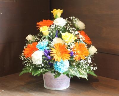 青い花、ブルーの花、いわき市,小名浜,花屋,花国湘南台店