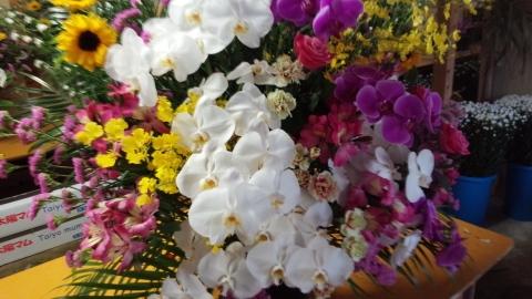お祝,開店祝、 オープン祝、スタンド花、いわき市,小名浜,花屋,花国湘南台店