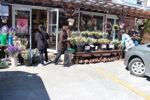 お彼岸セール、花、安い、いわき市,小名浜,花屋,花国湘南台店