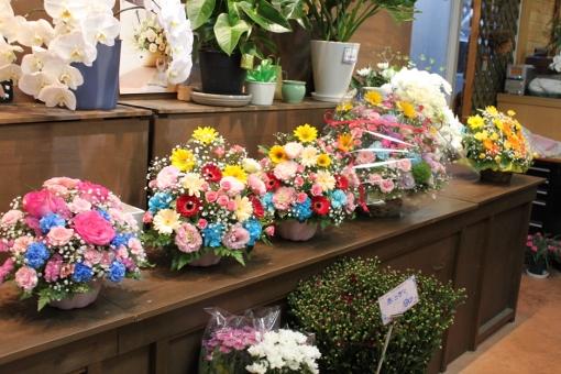 お花、アレンジメント、いわき市,小名浜,花屋,花国湘南台店