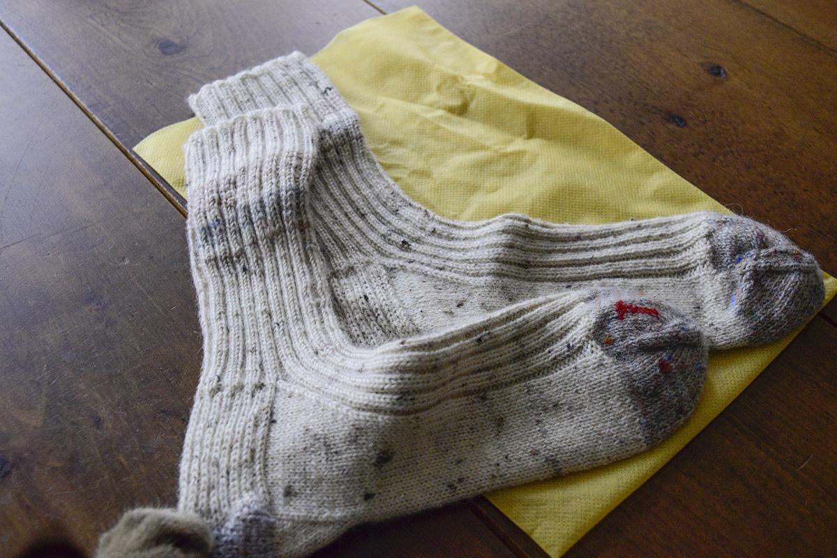 靴下に手を伸ばすキジトラ猫の虎ノ介