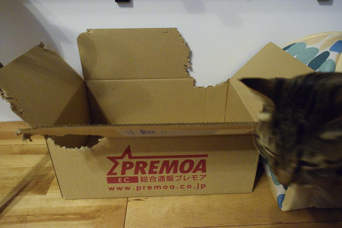 両側がかみちぎられた箱