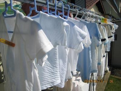 まめ洗濯物