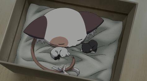 ましろ色シンフォニー8話ぱんにゃと子猫