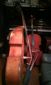 bass_cello