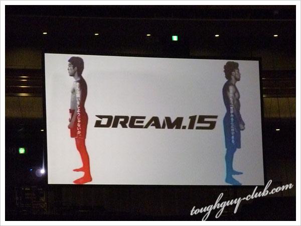 DREM15