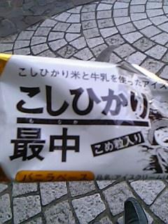 20061019_268512.jpg