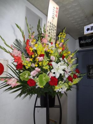 超大きな花