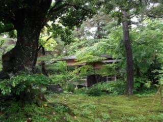 清水園(3)