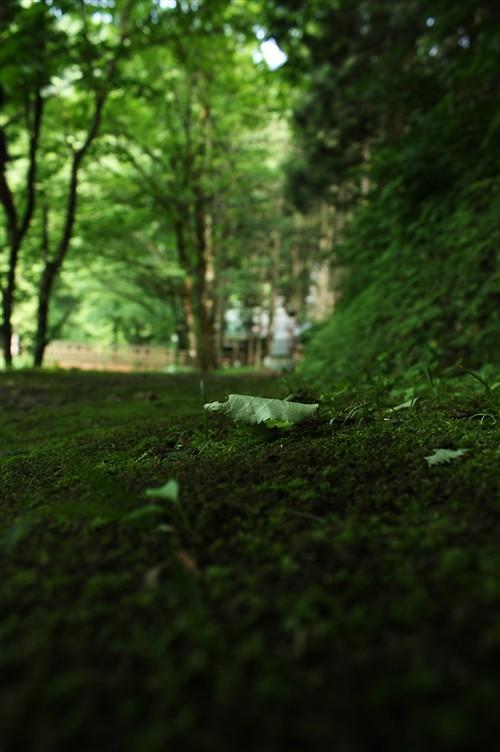 玉簾の滝_001