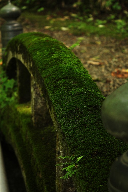 玉簾の滝_003