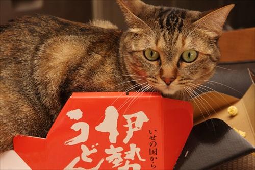 大阪Vol.21旨旨リポート