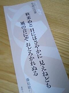 060704_2035~0001.jpg