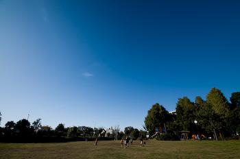 091103晩秋公園の青空