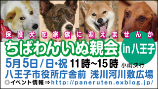 hachiouji20130505_320x180.jpg