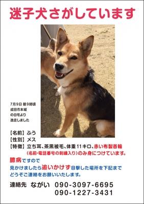 web_fuu.jpg