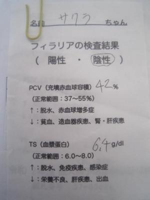IMG_2932.JPG
