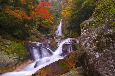 十津川村笹の滝の紅葉