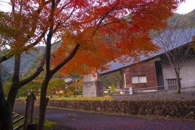 昴の郷(野猿周辺)紅葉