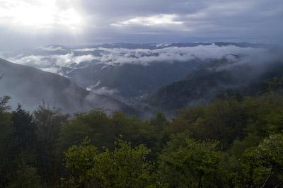 霧の玉置山展望台