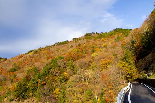 玉置山の紅葉6