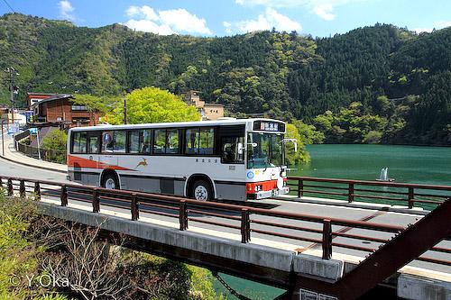 新緑と八木新宮特急バス