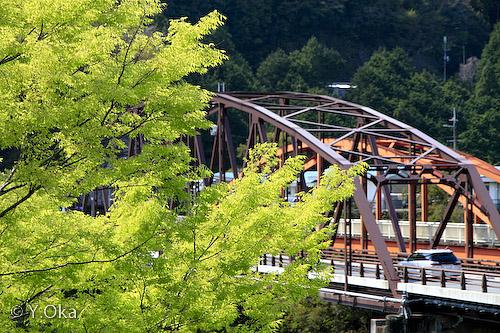 新緑と庵の前橋